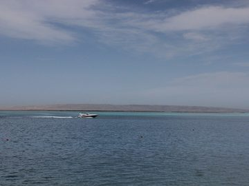 Zoom on the Red Sea
