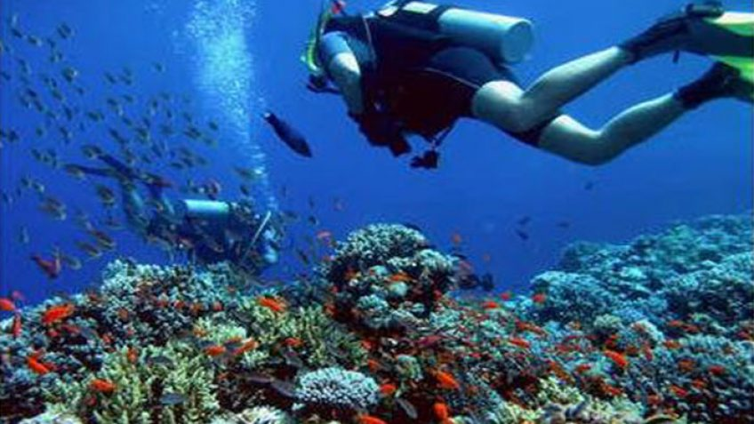 Hurghada diving